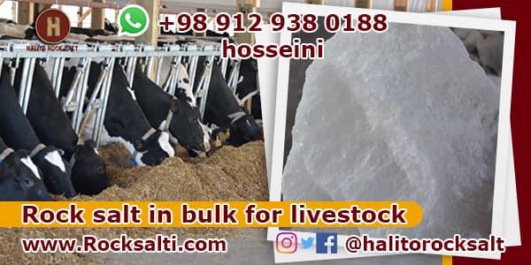 Export livestock rock salt